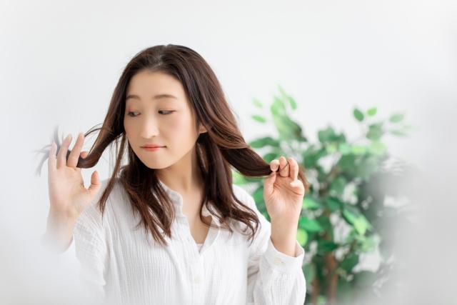 髪の毛は食べ物で増やすことができるって本当?美容師が紹介!